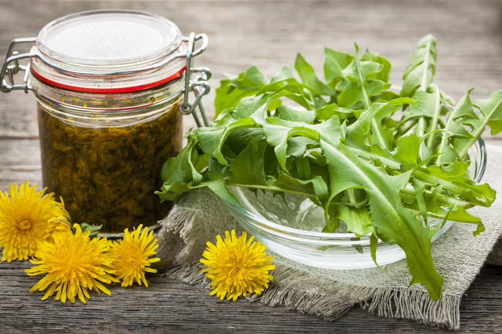 Dandelion greens with dandelion jam