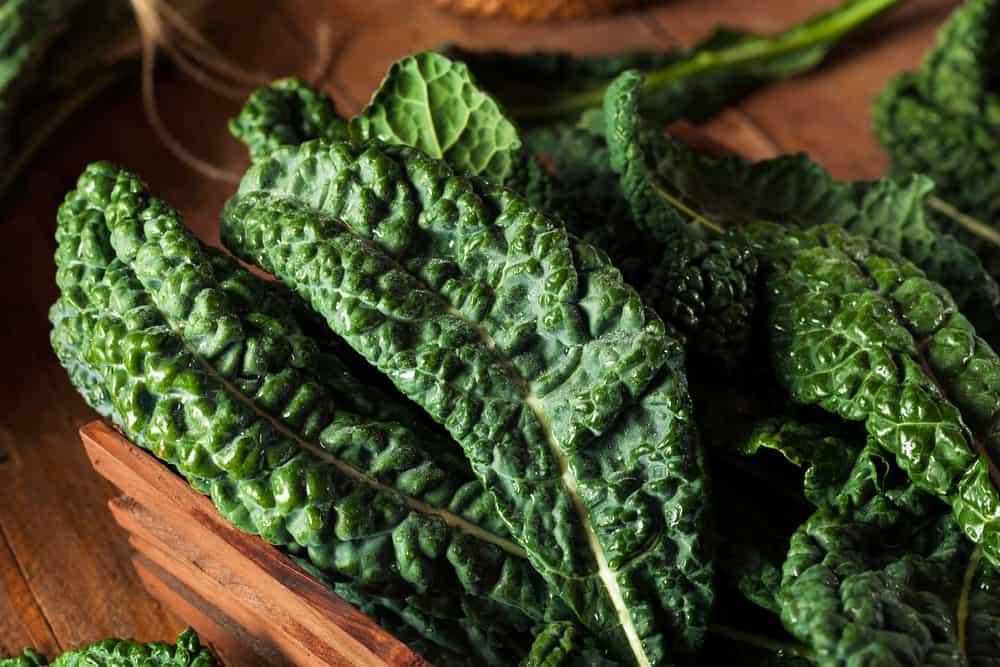 Tuscan (Lacinato) Kale